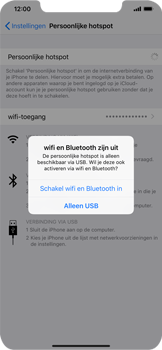 Apple iPhone XS Max - Internet - Stel mobiele hotspot in - Stap 7