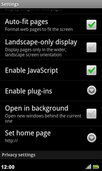 Acer Liquid Metal S120 - Internet - Manual configuration - Step 14