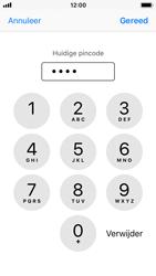 Apple iphone-5s-met-ios-11-model-a1457 - Beveiliging en ouderlijk toezicht - Hoe wijzig ik mijn SIM PIN-code - Stap 7