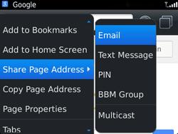 BlackBerry 9720 Bold - Internet - Internet browsing - Step 19