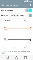 LG Leon - Internet - Ver uso de datos - Paso 10