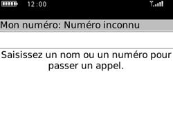 BlackBerry 8520 Curve - Messagerie vocale - Configuration manuelle - Étape 3