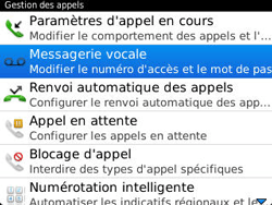 BlackBerry 9320 Curve - Messagerie vocale - Configuration manuelle - Étape 7