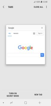 Samsung Galaxy S9 - Internet - Internet browsing - Step 16