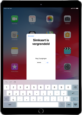 Apple ipad-9-7-inch-6th-generation-model-a1954-ios-12 - Instellingen aanpassen - Hoe gebruik ik de Automatisch inloggen-optie - Stap 24