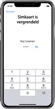 Apple iphone-xs-max-met-ios-13-model-a1921 - Instellingen aanpassen - Hoe gebruik ik de Automatisch inloggen-optie - Stap 24