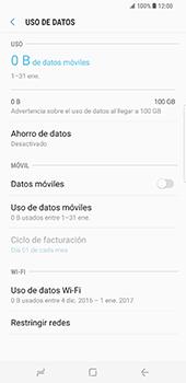 Samsung Galaxy S8 Plus - Internet - Activar o desactivar la conexión de datos - Paso 8