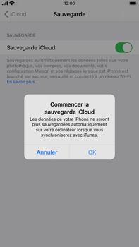Apple iPhone 7 Plus - iOS 13 - Données - créer une sauvegarde avec votre compte - Étape 11