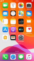 Apple iphone-6s-met-ios-13-model-a1688 - Bellen - WiFi Bellen (VoWiFi) - Stap 2