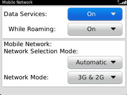 BlackBerry 9320 Curve - Internet - Enable or disable - Step 6