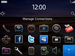 BlackBerry 9780 Bold - Internet - Enable or disable - Step 3