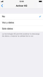 Apple iPhone 5s - iOS 11 - Red - Seleccionar el tipo de red - Paso 7