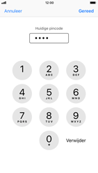 Apple iPhone 6s met iOS 11 (Model A1688) - Beveiliging en ouderlijk toezicht - Hoe wijzig ik mijn SIM PIN-code - Stap 7