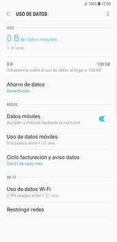 Samsung Galaxy Note 8 - Internet - Activar o desactivar la conexión de datos - Paso 6
