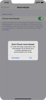 Apple iPhone 11 Pro Max - Data - maak een back-up met je account - Stap 11
