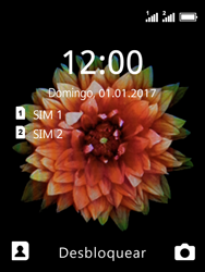 Nokia 3310 - Internet no telemóvel - Como configurar ligação à internet -  22