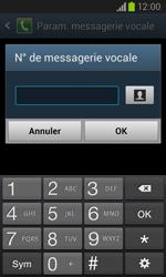 Samsung I8260 Galaxy Core - Messagerie vocale - Configuration manuelle - Étape 8