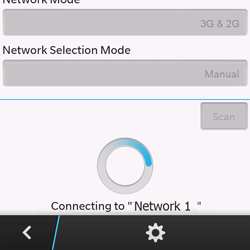 BlackBerry Q10 - Network - Usage across the border - Step 10