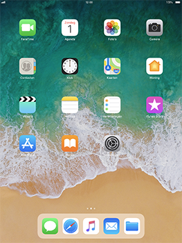 Apple iPad Pro 10.5 inch - iOS 11 - Internet - Handmatig instellen - Stap 2